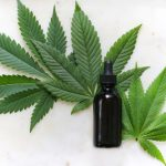 What is Cannabidiol (CBD Oil)? The Uses & Benefits